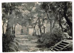 XW 1483 Pesaro - Villa Immacolata - Strada Delle Marche / Viaggiata 1961 - Pesaro