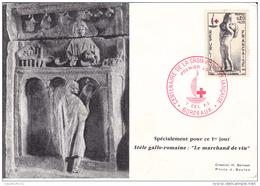 LABORATOIRE SERVIER     CENTENAIRE DE LA CROIX ROUGE  BORDEAUX 7 DEC 1963 - Cartes-Maximum