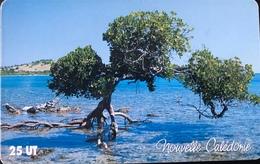 NOUVELLE CALEDONIE -  Phonecard  -  Mangrove  -  NC 118  -  25 Unités - Nueva Caledonia