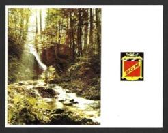 Dommartin Les Remiremont (88).   Carte De Voeux Ancienne De La Brasserie De Dommartin.   DOM.   Bière.   Beer. - France