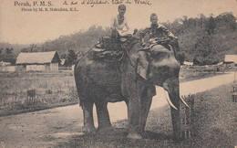 Malaisie - Hommes Et Leur éléphant - Perak F.M.S. Photo By M.S. Nakajima Malaysia Malaya Asie Asia - Malaysia