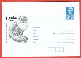 Bulgaria, Bulgarie 1998; Gatto Persiano, Chat Persan, Persian Cat, Katze: Postal Stationery, Intero Postale. - Gatti