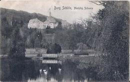 "6 075 Ak Burg Schlitz Bahnpost ""HAMBURG-STETTIN"" 1908 - Usados"
