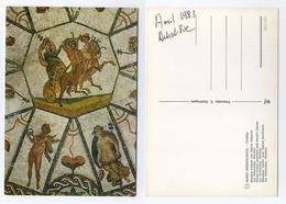 CP Espagnole - Mosaïque Romaine Cordoue - Roman Mosaic - Romano Mosaico Cordoba - Spain Spanien - Char Centaures - Autres