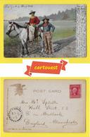 1906 2c Washington, Carmine ♥️ ♥️☺♦♦ CHROMO ☺ COW BOY - Co. New York Leipzig - Etats-Unis