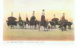 CPA Algérie Caravane Dans Le Désert De 1908 - Algérie