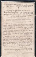 Doodsprentje Amandus Josephus Van Genechten  ° 1876 Gheel Geel + 1910 Wommelghem Wommelgem - Imágenes Religiosas