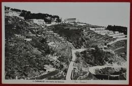 Postcard Of The   Caramulo  /  Um Trecho Da Estancia  ( Lote N º 1179 ) - Aveiro