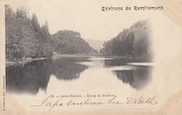 SAINT-NABORD (environs De Remiremont): Etang De La Huchère - Saint Nabord