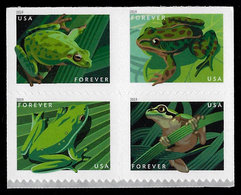 USA, 2019, 5395-5398, Frogs, Block Of 4 With Cover On Reverse,  Forever, MNH, VF - United States