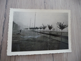 Photo Originale Inondations D'Alais Alès Gard 1958 Avenue Carnot - Lieux