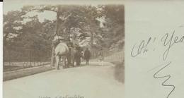 75-40782 -   PARIS   -  Jardin D'Acclimatation , Les Elephants  - 1910 - - Autres