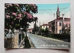 Cartolina Illustrata Musile Di Piave-Via Martiri, Per Udine - Otras Ciudades