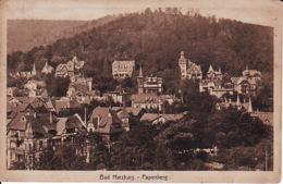 260297Bad Harzburg, Papenberg 1921 - Bad Harzburg