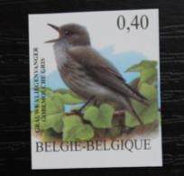 3265 'BUZIN: Grauwe Vliegenvanger' - Ongetand - Zeer Mooi! - Belgique