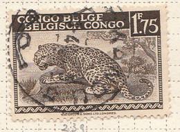 PIA - CONGO BELGA  - 1942 : Serie Corrente : Leopardo  -  (Yv 239) - Oblitérés