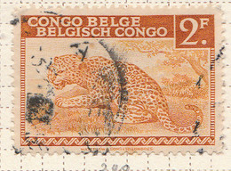 PIA - CONGO BELGA  - 1942 : Serie Corrente : Leopardo  -  (Yv 240) - Oblitérés