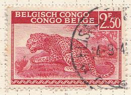 PIA - CONGO BELGA  - 1942 : Serie Corrente : Leopardo  -  (Yv 241) - Oblitérés