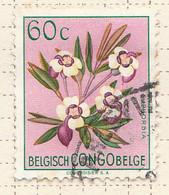 PIA - CONGO BELGA  - 1952 : Serie Corrente - Fiori : Euforbia  -  (Yv 308) - Oblitérés