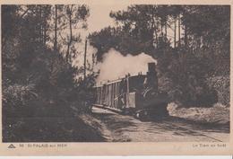 CP - LE TRAM EN FORÊT  - St-PALAIS-sur-MER - Tramways