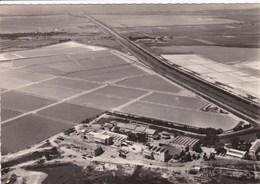 30 AIGUES MORTES Vue Aérienne Sur Le Salin  ,carte Année 1950 - Aigues-Mortes