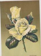BARRE DAYEZ  1459 X  ( Scan Recto-verso ) - Cartes Postales