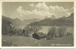 Rutliwiese (Uri, Svizzera) Und Die Mythen, Ansicht, View, Panorama, Vue - UR Uri