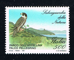 ITALY - 1991  - BIRDS -  UCCELLI  - 1 V - MNH - PEREGRINE FALCON - - Other