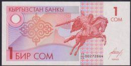 Ref. 2095-2518 - BIN KYRGYZSTAN . 1993. KYRGYZSTAN 1 SOM 1993 - Kyrgyzstan