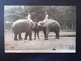 Exposition Coloniale. Les Éléphants De L'Inde. Non Voyagée. - Exhibitions