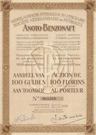 SOCIETE NEERLANDAISE DE PETROLES -ANOTO-BENZONAFT 2 ACTIONS DE 100 FLORINS -ANNEE 1922 - Banque & Assurance