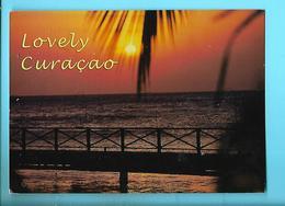 ANTILLES NEERLANDAISES---lovely Curaçao--voir 2 Scans - Curaçao