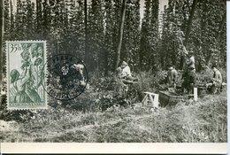 53971 Ceskoslovensko, Maximum 1957 Chmelova Brigada,Hop Pickers,Cueilleurs De Houblon,Raccoglitori Di Luppolo - Agriculture