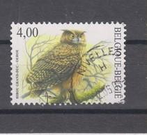 COB 3273 Cachet Rond Hibou Grand-duc - 1985-.. Vogels (Buzin)
