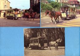 TN   Tram à Chevaux - NE Neuchatel