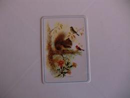 Squirrel Écureuil Esquilo Coleção Europa 95 Portugal Portuguese Pocket Calendar 1986 - Calendars