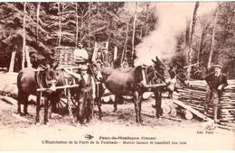 Faux-la-Montagne - L'Exploitation De La Forêt De La Feuillade - Mulets Faisant Le Transfert Des Bois - France