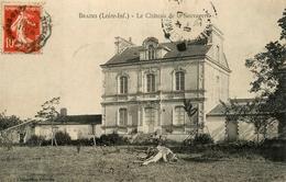 Brains - Le Château De La Sauvagerie - France
