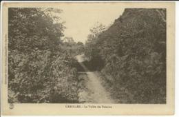 50 - CAROLLES - La Vallée Des Peintres   ***Plan Rare*** - France