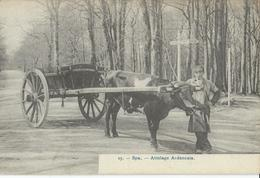 Spa  Attelage Ardennais - Spa