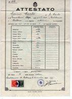1942 WWII ITALY, ITALIAN OCCUPATION OF MONTENEGRO,CASTELNUOVO DI CATTARO,SCHOOL CERTIFICATE,2 REVENUE STAMPS - 1900-44 Vittorio Emanuele III
