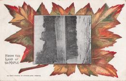 Rock Island Québec - Land Of Maple - Stamp - Written 1908 - 2 Scans - Otros