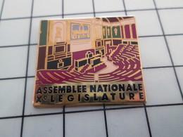 AB183 Pin's Pins / Beau Et Rare / THEME : ARTHUS BERTRAND / ASSEMBLEE NATIONALE XXe LEGISLATURE - Arthus Bertrand