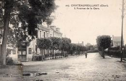 CPA - 18 - CHATEAUMEILLANT - L'Avenue De La Gare - Châteaumeillant