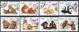 Y85 CUBA 1979 2439-2446 The Young Zoo. Pandas. Primates. Predatory Cats. The Bears. Deer - Chimpancés