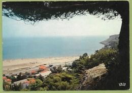 11 Aude La Franqui ( Plage ) Env De Leucate Entre Narbonne Et Perpignan - France