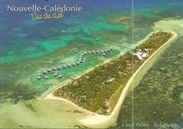 ( NOUVELLE CALEDONIE ) ( ILOT MAITRE  ) ( CORAL PALMS ) - Nouvelle Calédonie