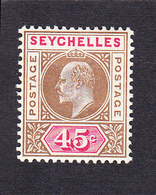 Seychelles 1903 45c   SG53   MH - Seychelles (...-1976)