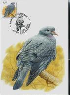 CM Du N° 3069  Pigeon Colombin  -  Holduif   Obl.: Charleroi 04/05/2002 - 1985-.. Oiseaux (Buzin)