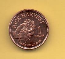 OFERTA - GUYANA 1 Dolar 2002 SC   KM50 - Guyana